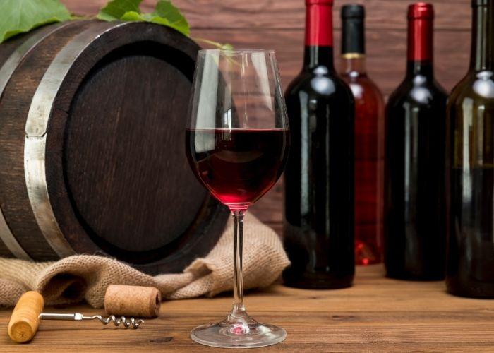 Emprendimiento en Chile área vinícola